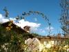 Certosa1515_stagioni_01