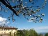 Certosa1515_stagioni_02