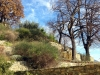 Certosa1515_stagioni_32