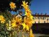 Certosa1515_stagioni_34